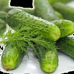 Photo of Cucumbers  Gourmet 5 Pack
