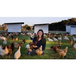 Photo of Madelaine's Organic Eggs Dozen 700g