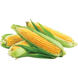 Photo of Sweetcorn Each