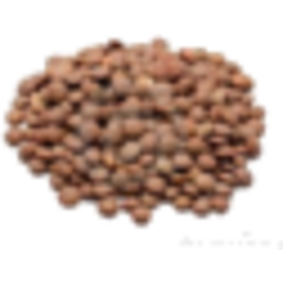 Photo of Nutra Foods Lentils Green/Brown 500g