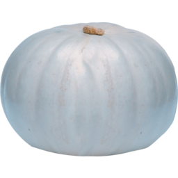 Photo of Pumpkin Kg