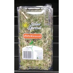 Photo of Sprouts Alfalfa & Broccoli Ea