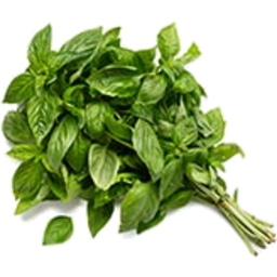 Photo of Herbs Basil