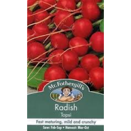 Photo of Seed Radish Scarlet Globe A