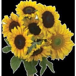 Photo of J&Co Sunflower Bouquet