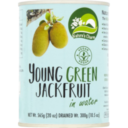 Photo of Nature's Charm Young Green Jackfruit 565g