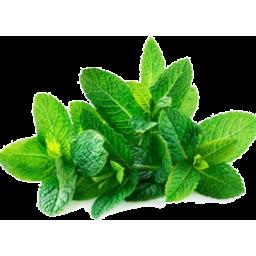 Photo of Herbs Mint