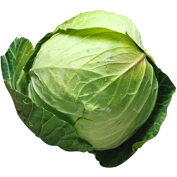 Photo of Cabbage - Green Whole