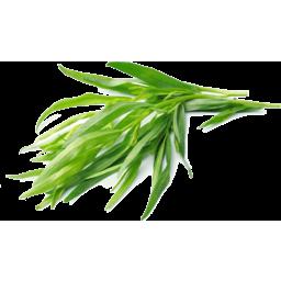 Photo of Herbs Tarragon Each