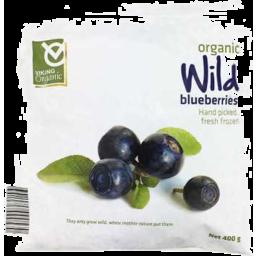 Photo of Viking Organic Frozen Wild Blueberries
