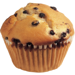 Photo of Blueberry Muffin