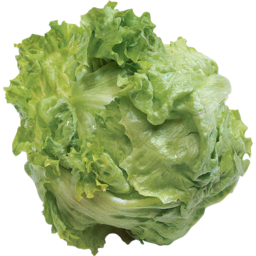 Photo of Lettuce Iceberg Fresh