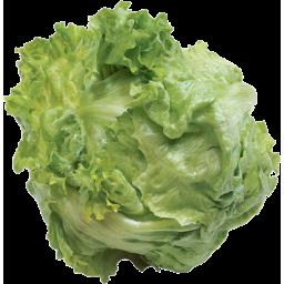 Photo of Lettuce Iceburg