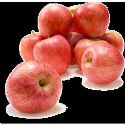 Photo of Apples Bag Gala Ea