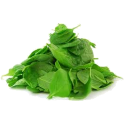 Photo of Spinach Baby Mix Kg