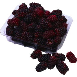 Photo of Blackberries Punnet 120g
