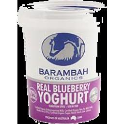 Photo of Yoghurt Barambah Blueberry Yoghurt 200g