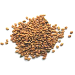 Photo of Fenugreek Seeds 95g