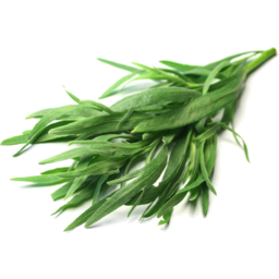 Photo of Acre Fresh Tarragon