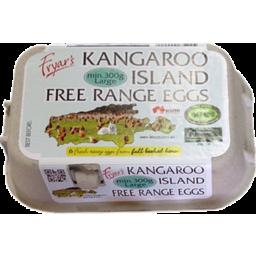 Photo of Ki Free Range Large Eggs 300g