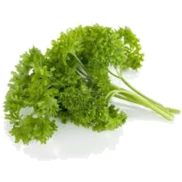 Photo of Parsley - Curly