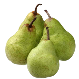 Photo of Pears Packham