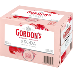 Photo of Gordon's 4% Pink Gin & Soda 12x250ml Cans