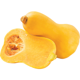 Photo of Pumpkin Butternut Each