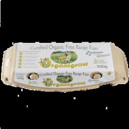 Photo of Organigrow Eggs Organic Dozen 700g