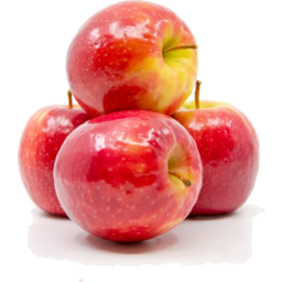 Photo of Apple Pink Lady Small