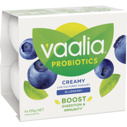 Photo of Vaalia Probiotic Blueberry Yoghurt 4x150g