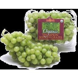 Photo of Organic Green Seedless Grape