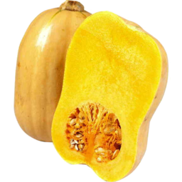 Photo of Pumpkin Butternut