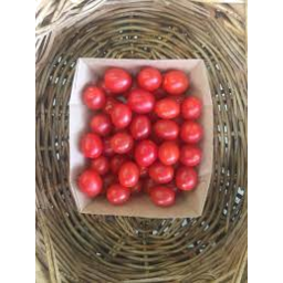 Photo of Tomatoes Mini Roma In Tray