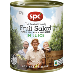 Photo of Spc Fruit Salad In Juice 825g
