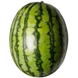 Photo of Watermelon Seedless KG (Whole)