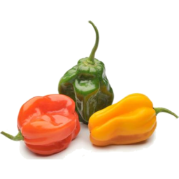Photo of Hot Peppers