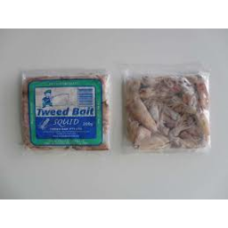 Photo of Bait Squid Each