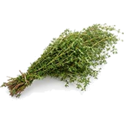 Photo of Herbs Thyme Fresh