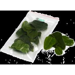 Photo of Herb - Kaffir Lime Leaves