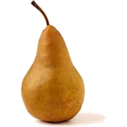 Photo of Beurre Bosc Brown Pears
