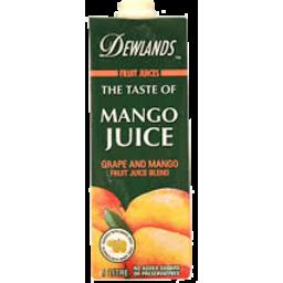 Photo of Dewlands Mango Juice 1l