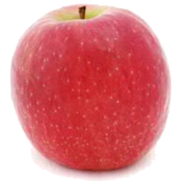Photo of Pink Lady Apples