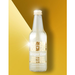 Photo of Famous Soda Ginger 330ml