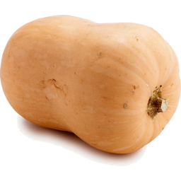 Photo of Pumpkin - Butternut