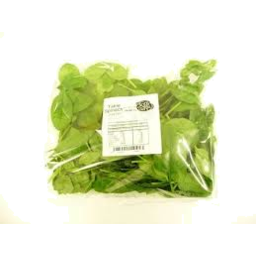 Photo of Spinach 100gr pack