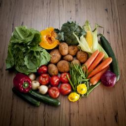 Photo of Very Veggie Box