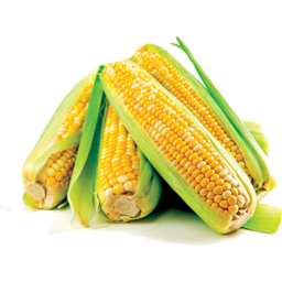 Photo of Corn Sweet Pre Pack