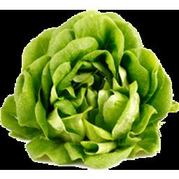 Photo of Lettuce Butter