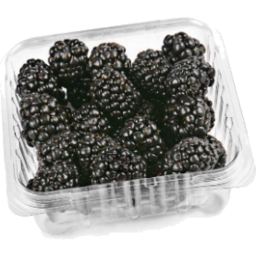 Photo of Blackberries Punnet 125gm